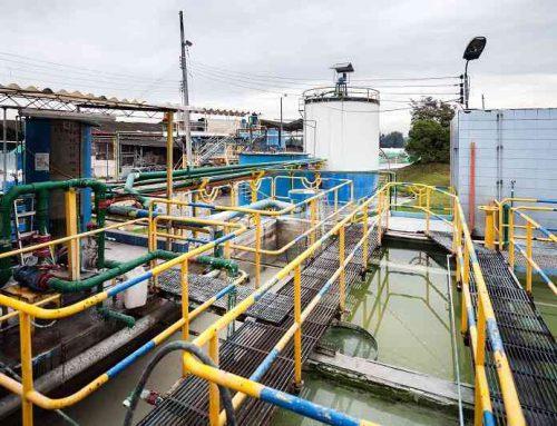 Corona incursiona en el sector agroindustrial con la compra de Agromil